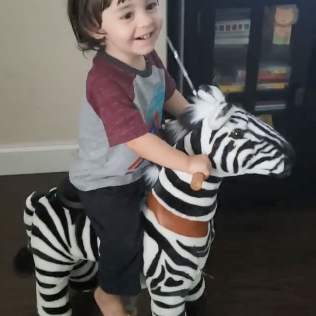 Toddle ride on toys zebra